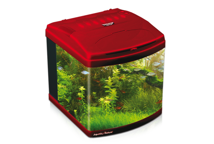 Aquarium Evolution Deep Red