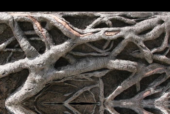 Arbusto E