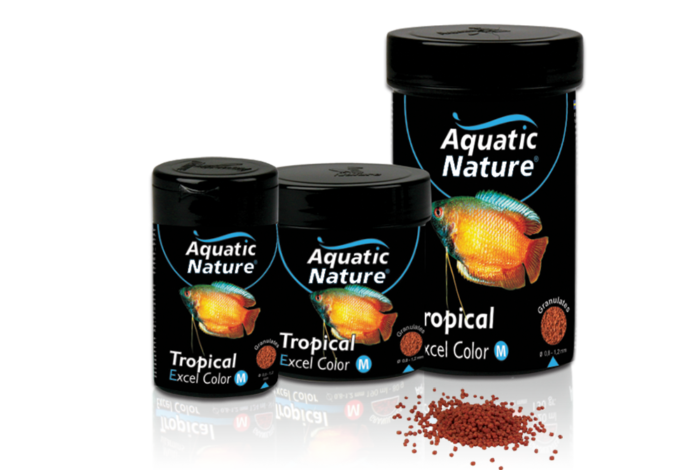 Tropical Excel Color M