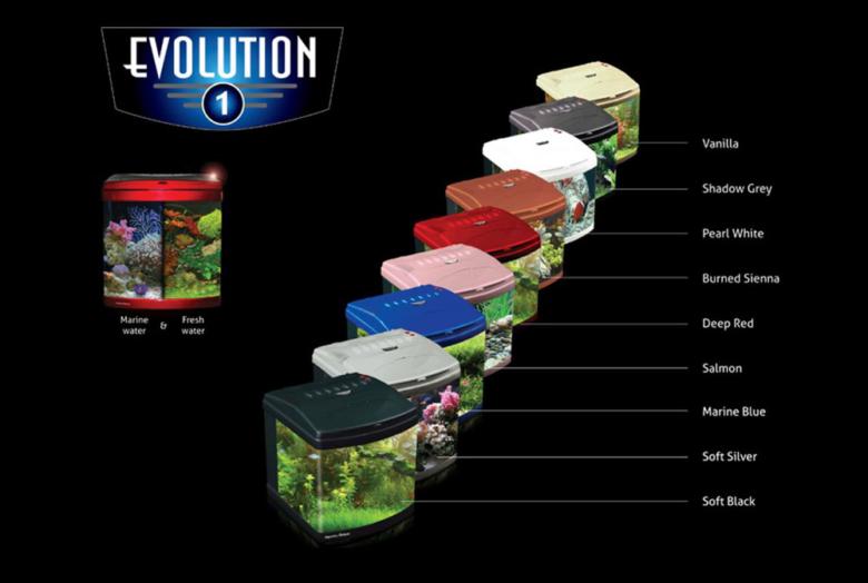 Evolution Aquarium
